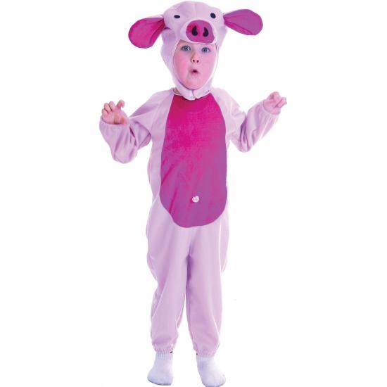 Carnavalskleding varken voor peuters