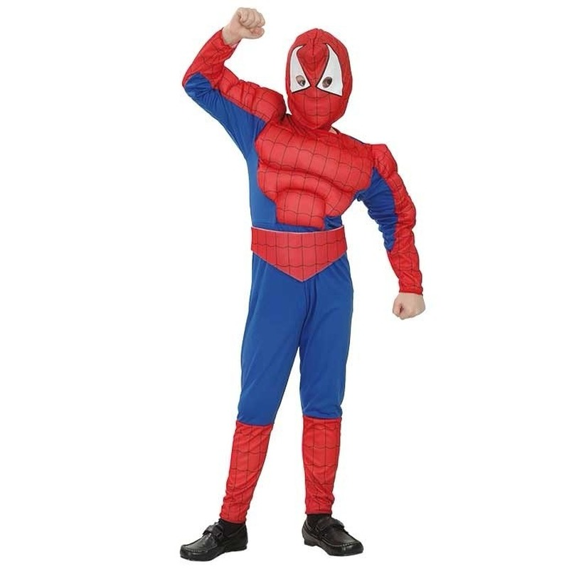 Feest Spinnenheld kostuum