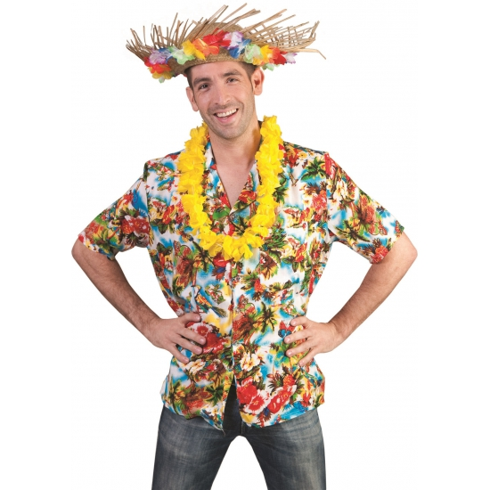 Hawaii kleding shirt heren