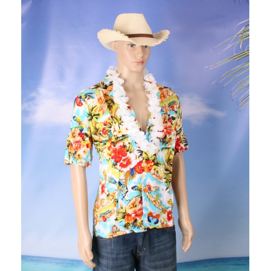 Hawaii verkleed set voor heren maat 2XL/3XL