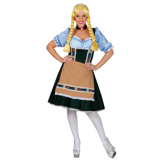 Verkleedkleding Heidi jurkje groen/blauw