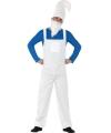 Blauwe kabouter kostuum voor heren