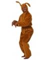 Bruine haas kostuum voor volwassenen
