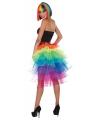 Gekleurde regenboog petticoat