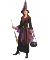 Halloween paarse heksen jurk inclusief hoed
