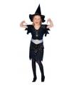 Halloween zwart heksenjurkje met zilveren spinnen