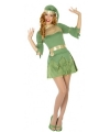 Kerst groen elfen verkleedjurkje