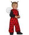 Lieveheersbeestje kostuum voor peuters