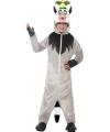 Madagascar lemur aap kostuum voor kinderen
