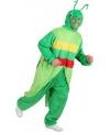 Sprinkhaan kostuum voor volwassenen