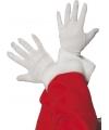 Witte feest handschoenen