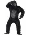 Apen pakken volwassenen gorilla