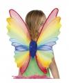 Vleugels 60 x 20 cm